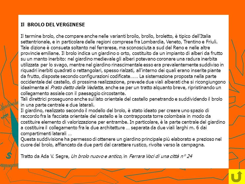 Il BROLO DEL VERGINESE Il termine brolo, che compare anche nelle varianti broilo, brollo, broletto, è tipico dell'Italia settentrionale, e in particol