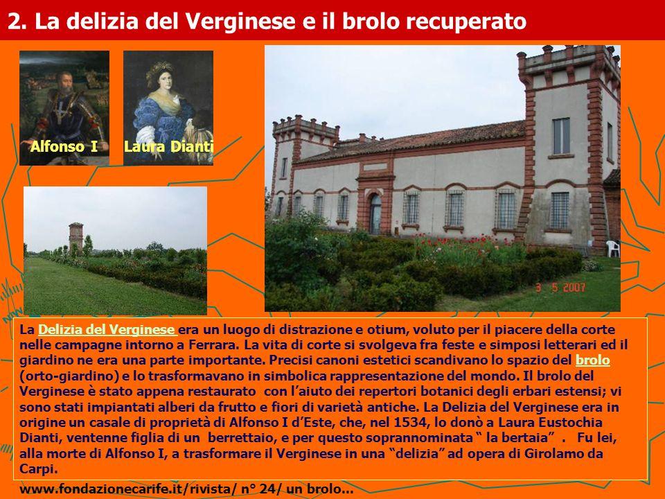 2. La delizia del Verginese e il brolo recuperato La Delizia del Verginese era un luogo di distrazione e otium, voluto per il piacere della corte nell