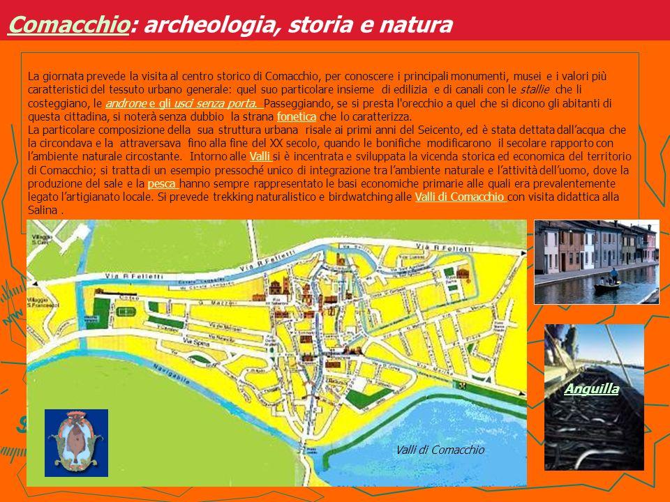 La giornata prevede la visita al centro storico di Comacchio, per conoscere i principali monumenti, musei e i valori più caratteristici del tessuto ur