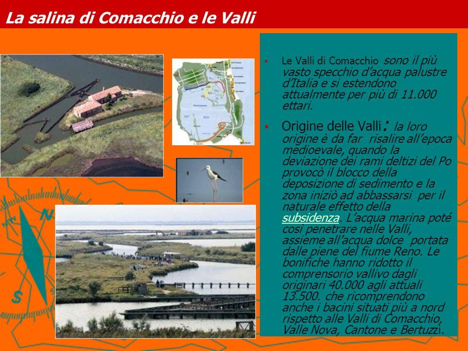 La salina di Comacchio e le Valli Le Valli di Comacchio sono il più vasto specchio dacqua palustre dItalia e si estendono attualmente per più di 11.00