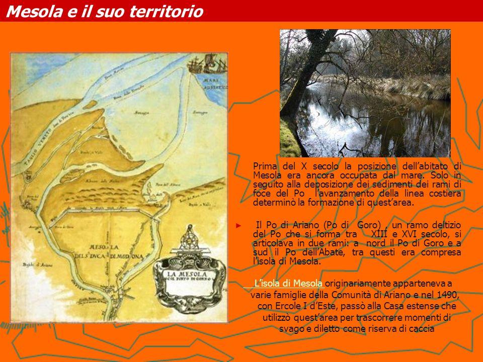 Mesola e il suo territorio Prima del X secolo la posizione dellabitato di Mesola era ancora occupata dal mare. Solo in seguito alla deposizione dei se