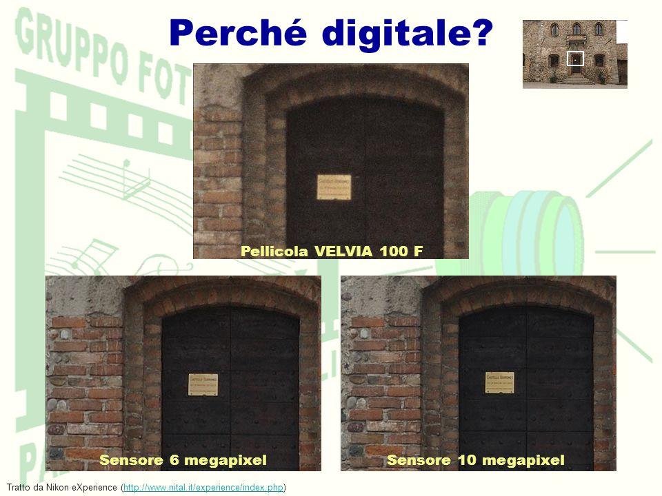 Perché digitale? Pellicola VELVIA 100 F Sensore 6 megapixel Sensore 10 megapixel Tratto da Nikon eXperience (http://www.nital.it/experience/index.php)