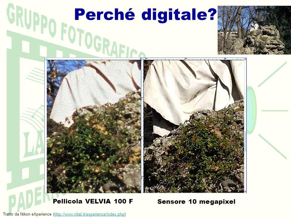 Perché digitale? Pellicola VELVIA 100 F Sensore 10 megapixel Tratto da Nikon eXperience (http://www.nital.it/experience/index.php)http://www.nital.it/