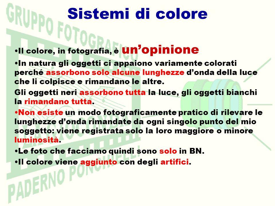 Sistemi di colore Il colore, in fotografia, è unopinione In natura gli oggetti ci appaiono variamente colorati perché assorbono solo alcune lunghezze donda della luce che li colpisce e rimandano le altre.