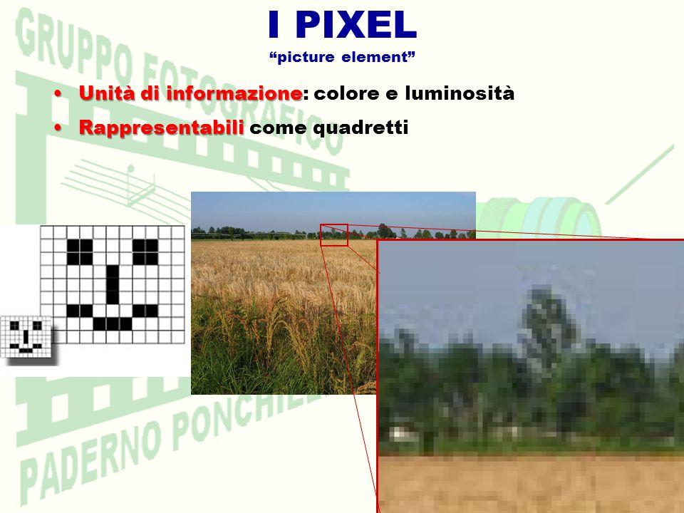 I PIXEL picture element Unità di informazioneUnità di informazione: colore e luminosità RappresentabiliRappresentabili come quadretti