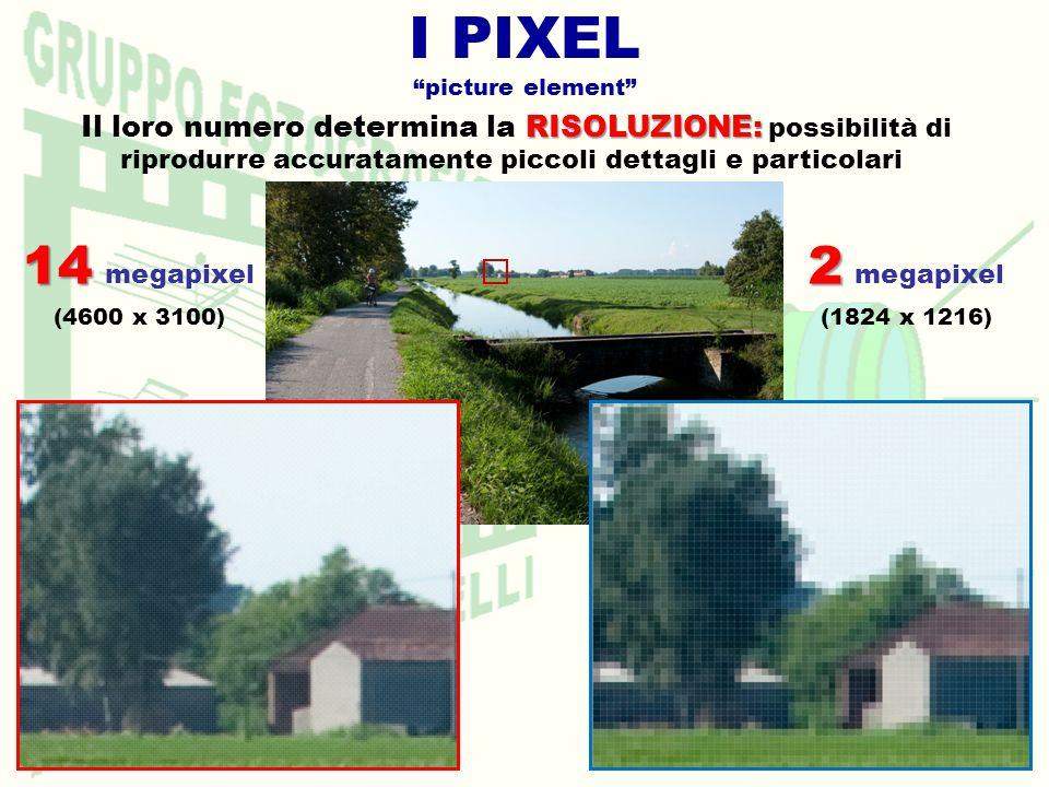 I PIXEL picture element RISOLUZIONE: Il loro numero determina la RISOLUZIONE: possibilità di riprodurre accuratamente piccoli dettagli e particolari 14 14 megapixel (4600 x 3100) 2 2 megapixel (1824 x 1216)