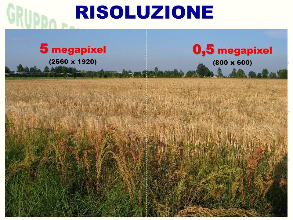 RISOLUZIONE 5 5 megapixel (2560 x 1920) 0,5 0,5 megapixel (800 x 600)