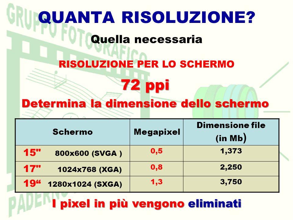 QUANTA RISOLUZIONE? Quella necessaria RISOLUZIONE PER LO SCHERMO SchermoMegapixel Dimensione file (in Mb ) 15