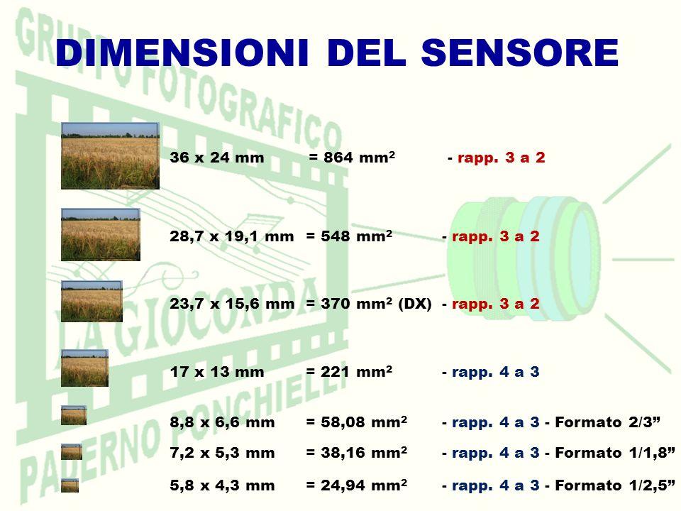 DIMENSIONI DEL SENSORE 36 x 24 mm = 864 mm 2 - rapp. 3 a 2 28,7 x 19,1 mm = 548 mm 2 - rapp. 3 a 2 23,7 x 15,6 mm = 370 mm 2 (DX)- rapp. 3 a 2 17 x 13