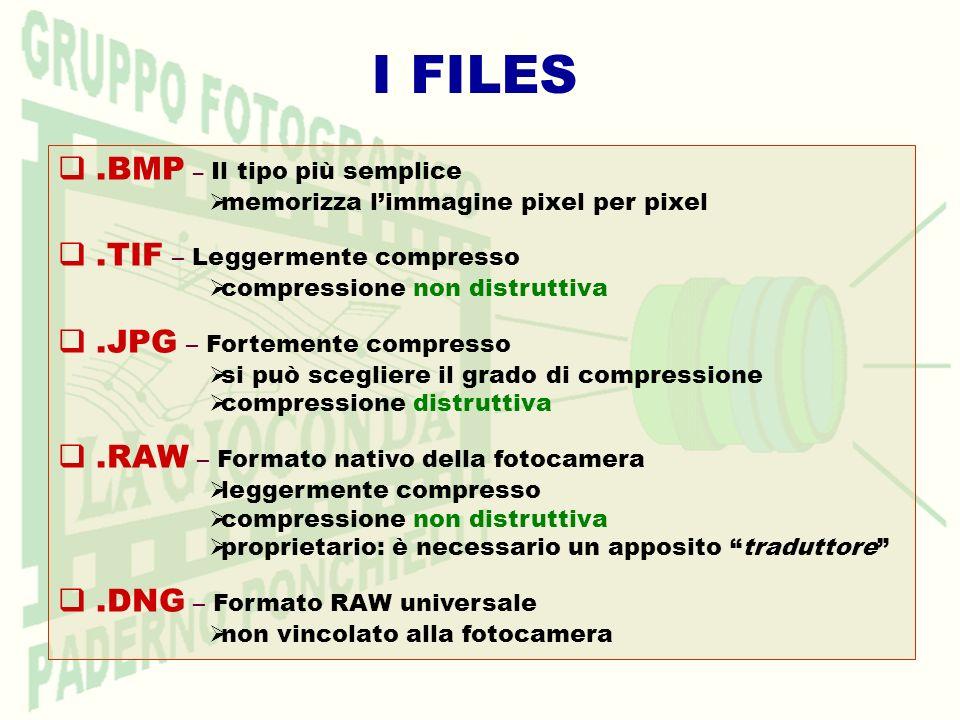I FILES.BMP – Il tipo più semplice memorizza limmagine pixel per pixel.TIF – Leggermente compresso compressione non distruttiva.JPG – Fortemente compr