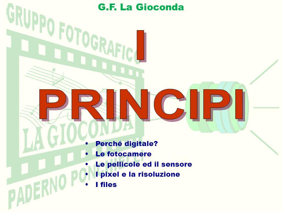 G.F. La Gioconda Perché digitale? Le fotocamere Le pellicole ed il sensore I pixel e la risoluzione I files
