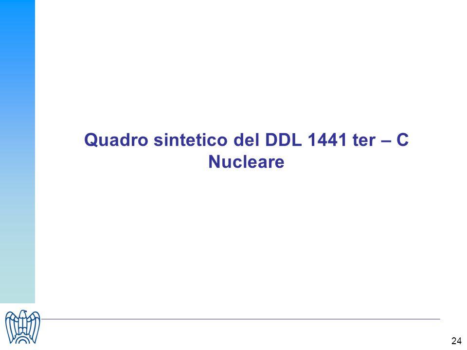 24 Quadro sintetico del DDL 1441 ter – C Nucleare