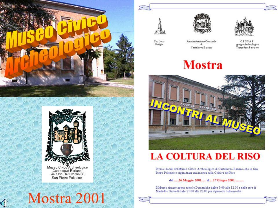 Mostra 2001