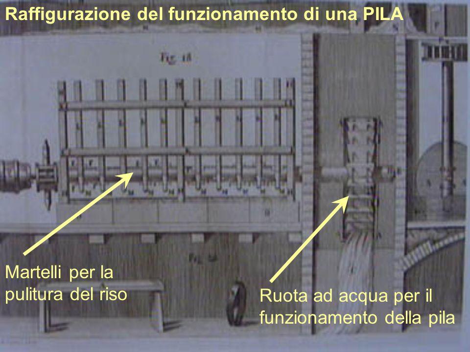 Raffigurazione del funzionamento di una PILA Martelli per la pulitura del riso Ruota ad acqua per il funzionamento della pila
