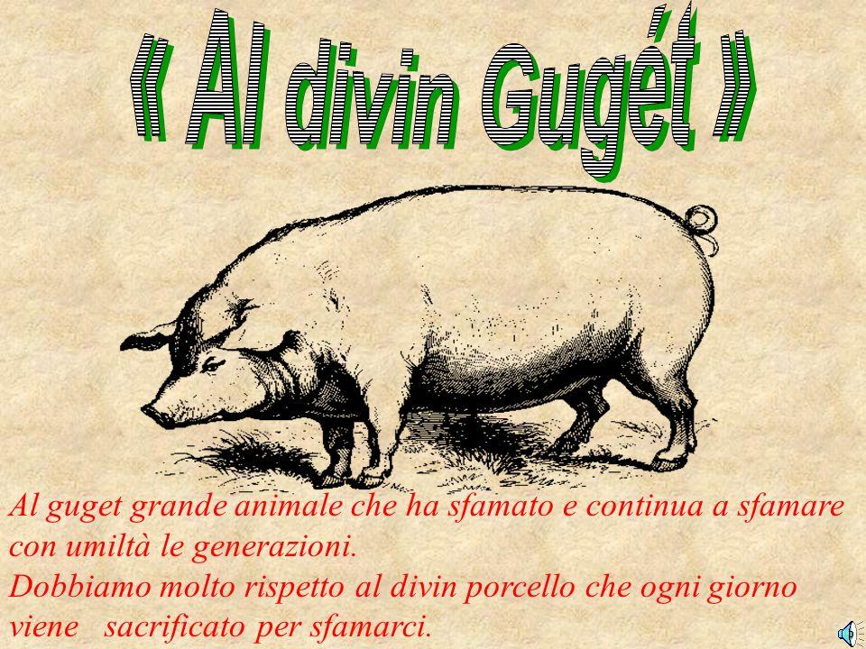 Al guget grande animale che ha sfamato e continua a sfamare con umiltà le generazioni. Dobbiamo molto rispetto al divin porcello che ogni giorno viene