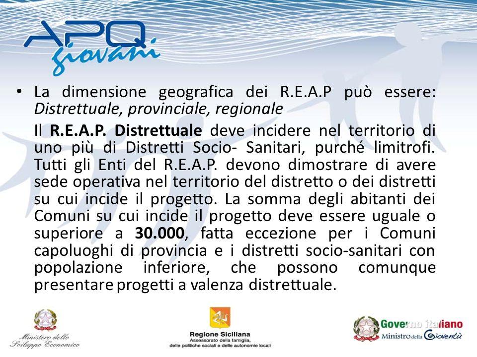 La dimensione geografica dei R.E.A.P può essere: Distrettuale, provinciale, regionale Il R.E.A.P. Distrettuale deve incidere nel territorio di uno più