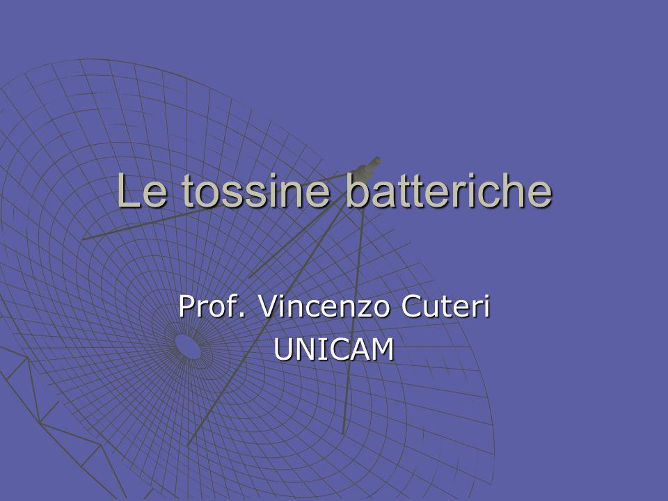 Introduzione Lattività patogena dei batteri si esplica attraverso le tossine.