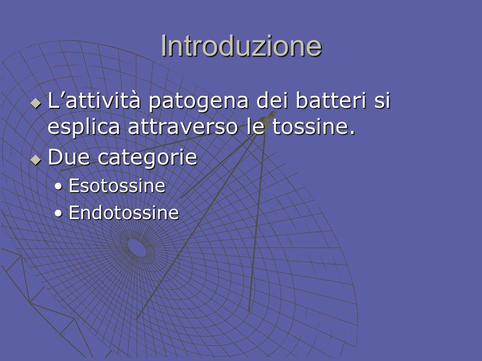 Introduzione Lattività patogena dei batteri si esplica attraverso le tossine. Lattività patogena dei batteri si esplica attraverso le tossine. Due cat