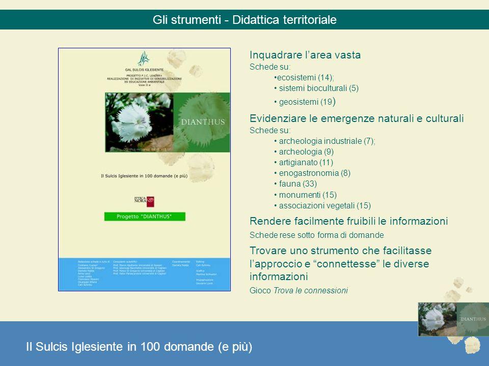 Gli strumenti - Didattica territoriale Inquadrare larea vasta Schede su: ecosistemi (14); sistemi bioculturali (5) geosistemi (19 ) Evidenziare le eme
