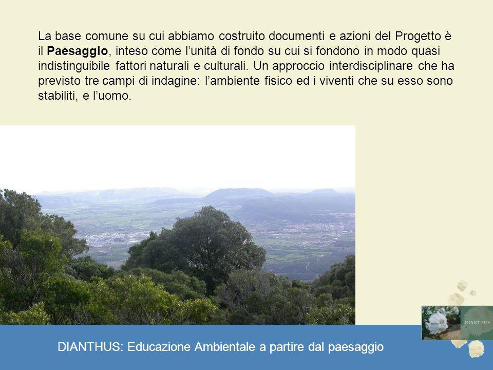 DIANTHUS: Educazione Ambientale a partire dal paesaggio La base comune su cui abbiamo costruito documenti e azioni del Progetto è il Paesaggio, inteso