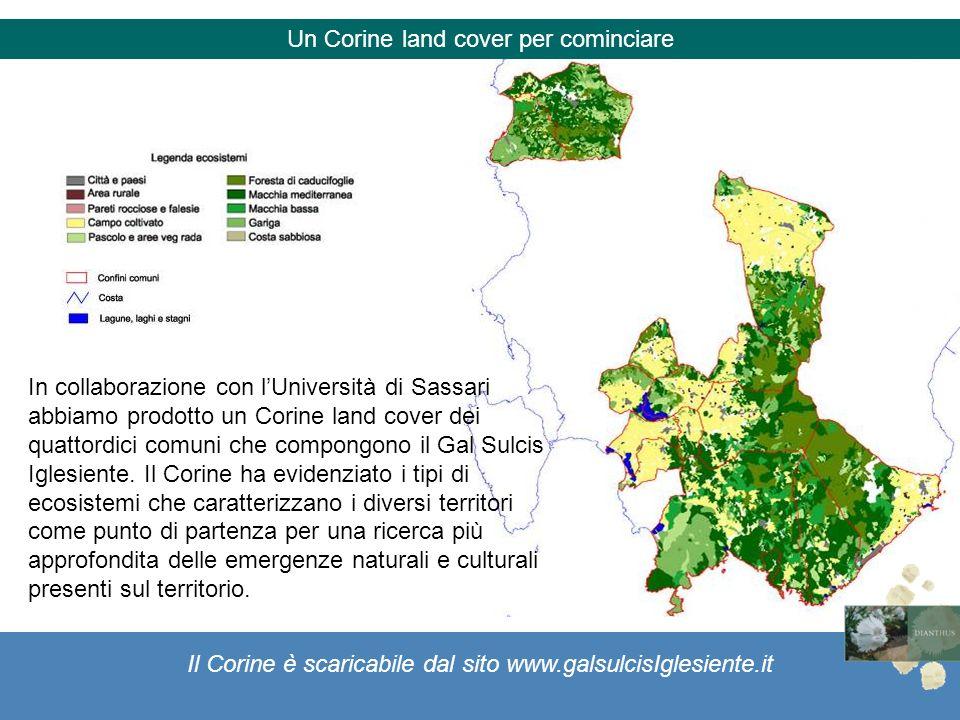 Il Corine è scaricabile dal sito www.galsulcisIglesiente.it Un Corine land cover per cominciare In collaborazione con lUniversità di Sassari abbiamo p