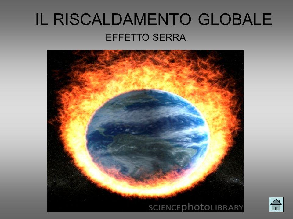 IL RISCALDAMENTO GLOBALE EFFETTO SERRA