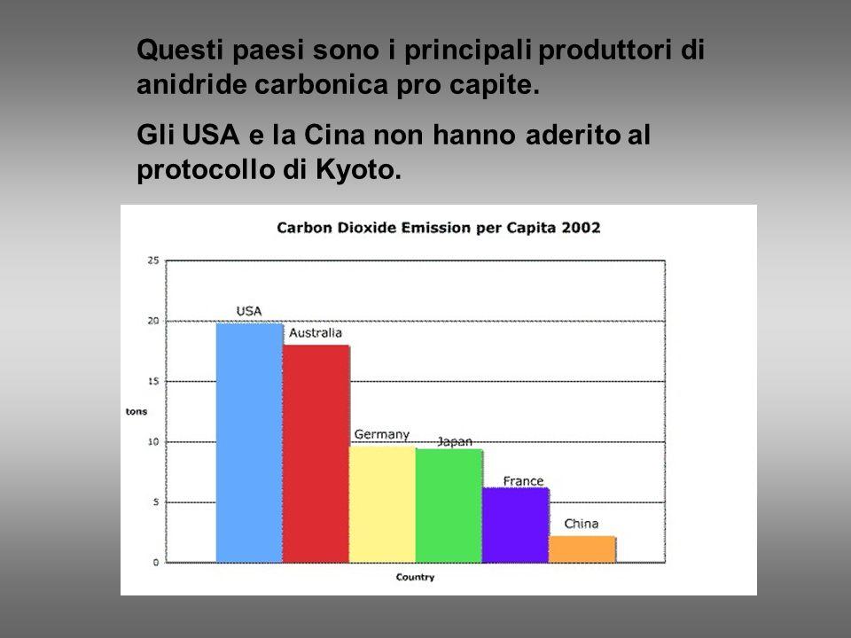 Questi paesi sono i principali produttori di anidride carbonica pro capite. Gli USA e la Cina non hanno aderito al protocollo di Kyoto.