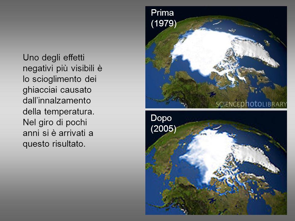 Uno degli effetti negativi più visibili è lo scioglimento dei ghiacciai causato dallinnalzamento della temperatura. Nel giro di pochi anni si è arriva