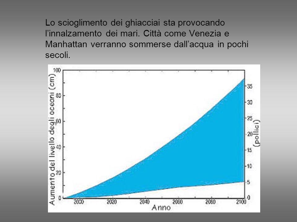 Lo scioglimento dei ghiacciai sta provocando linnalzamento dei mari. Città come Venezia e Manhattan verranno sommerse dallacqua in pochi secoli.