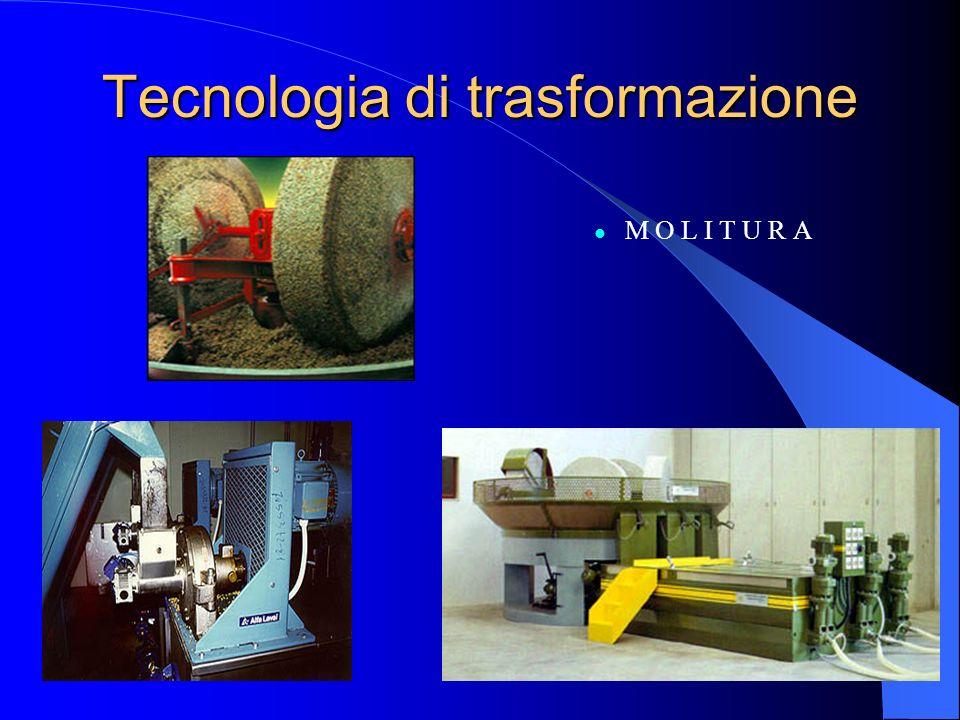 Tecnologia di trasformazione M O L I T U R A