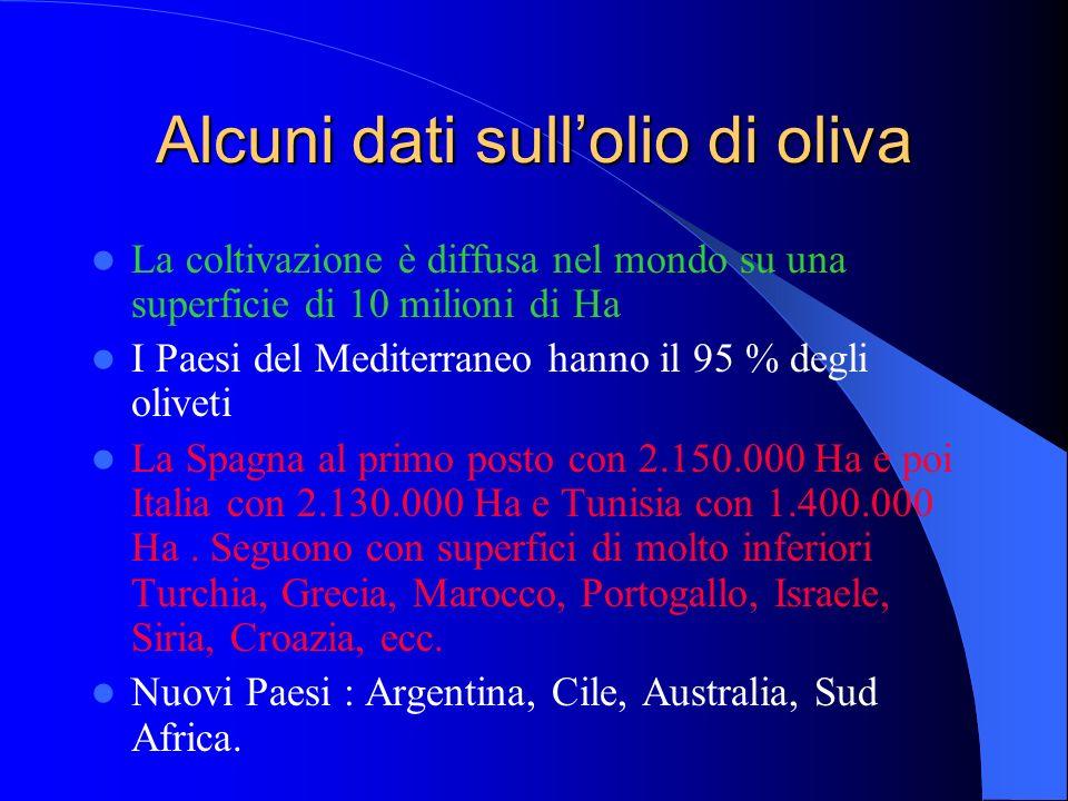 Alcuni dati sullolio di oliva La coltivazione è diffusa nel mondo su una superficie di 10 milioni di Ha I Paesi del Mediterraneo hanno il 95 % degli o