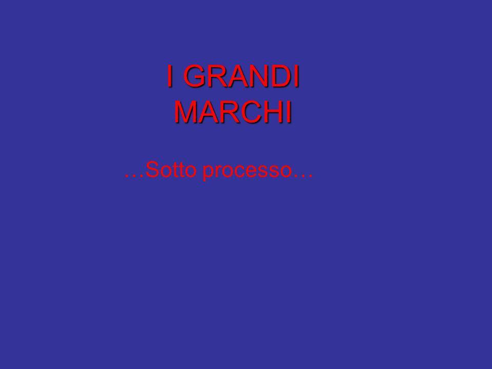 I GRANDI MARCHI …Sotto processo…