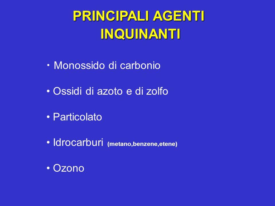 PRINCIPALI AGENTI INQUINANTI INQUINANTI Monossido di carbonio Ossidi di azoto e di zolfo Particolato Idrocarburi (metano,benzene,etene) Ozono
