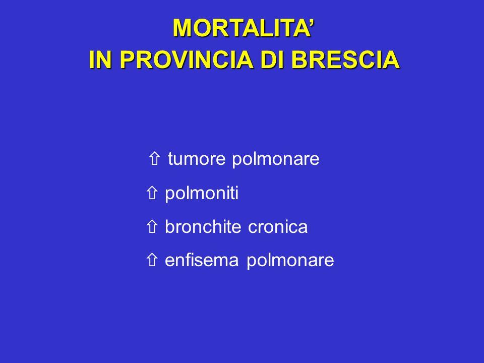 MORTALITA IN PROVINCIA DI BRESCIA tumore polmonare polmoniti bronchite cronica enfisema polmonare