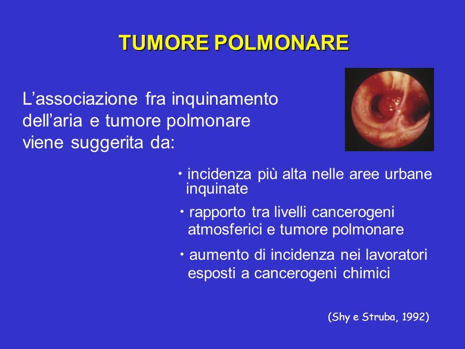 TUMORE POLMONARE Lassociazione fra inquinamento dellaria e tumore polmonare viene suggerita da: incidenza più alta nelle aree urbane inquinate (Shy e