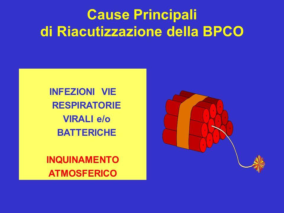 INFEZIONI VIE RESPIRATORIE VIRALI e/o BATTERICHE INQUINAMENTO ATMOSFERICO Cause Principali di Riacutizzazione della BPCO
