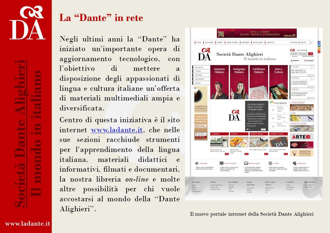 www.plida.it Società Dante Alighieri Il mondo in italiano Sondaggio PLIDA: dettaglio della voce Discipline universitarie