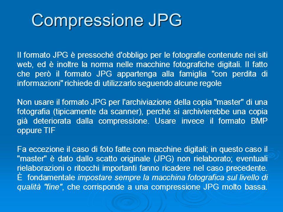 Compressione JPG Il formato JPG è pressoché d'obbligo per le fotografie contenute nei siti web, ed è inoltre la norma nelle macchine fotografiche digi