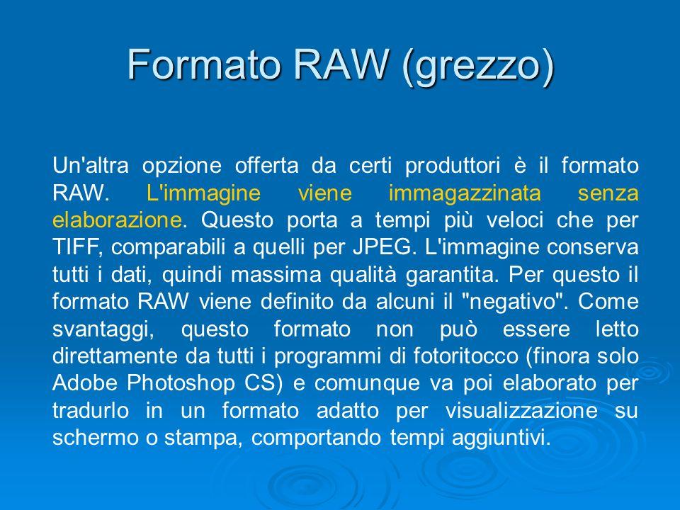 Formato RAW (grezzo) Un'altra opzione offerta da certi produttori è il formato RAW. L'immagine viene immagazzinata senza elaborazione. Questo porta a