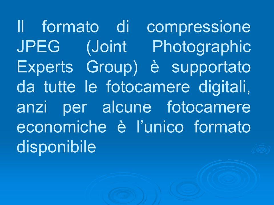 Il formato di compressione JPEG (Joint Photographic Experts Group) è supportato da tutte le fotocamere digitali, anzi per alcune fotocamere economiche