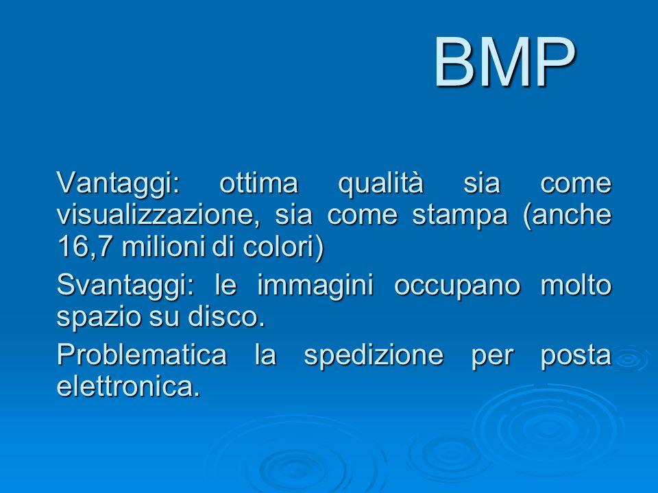 BMP Vantaggi: ottima qualità sia come visualizzazione, sia come stampa (anche 16,7 milioni di colori) Svantaggi: le immagini occupano molto spazio su