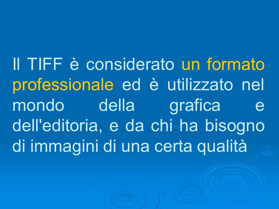 Il TIFF è considerato un formato professionale ed è utilizzato nel mondo della grafica e dell'editoria, e da chi ha bisogno di immagini di una certa q