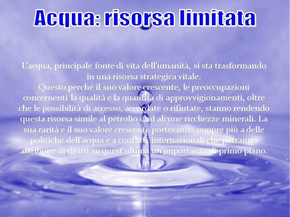 Tuttavia, per quanto riguarda la gestione dellacqua, cè da fare i conti con un crescente fenomeno di privatizzazione dellacqua.