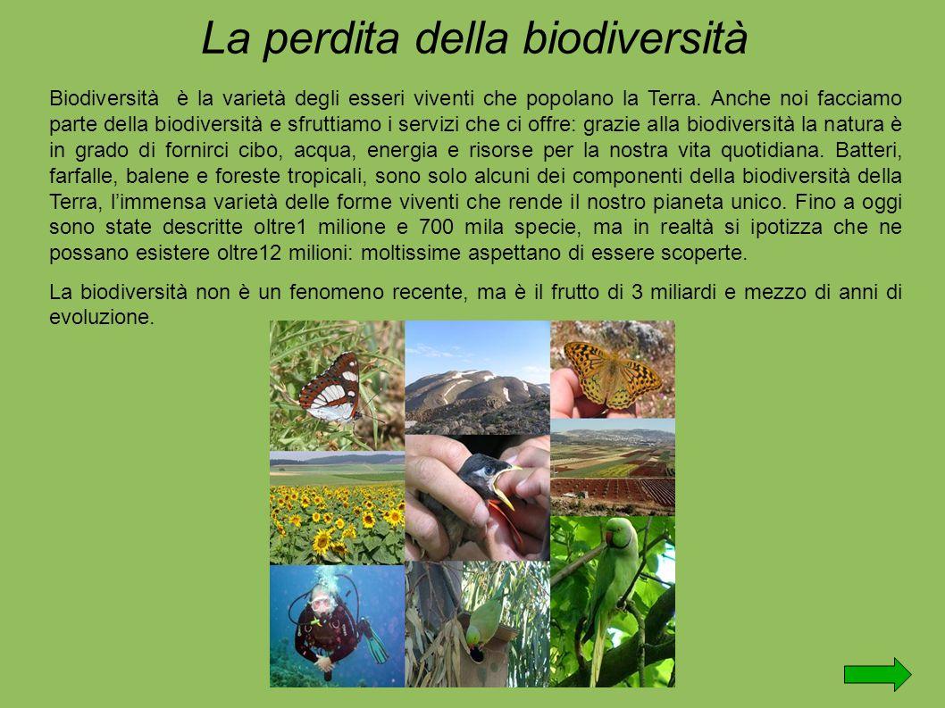 Biodiversità è la varietà degli esseri viventi che popolano la Terra.