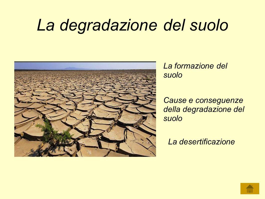 La degradazione del suolo La formazione del suolo Cause e conseguenze della degradazione del suolo La desertificazione