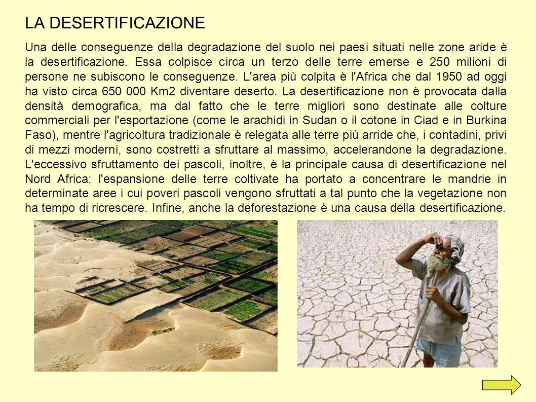 LA DESERTIFICAZIONE Una delle conseguenze della degradazione del suolo nei paesi situati nelle zone aride è la desertificazione. Essa colpisce circa u