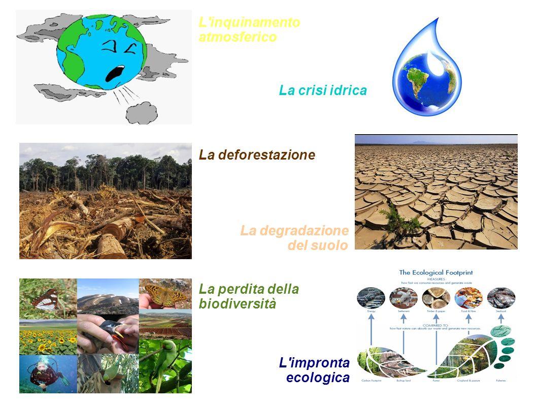 L'inquinamento atmosferico La perdita della biodiversità La deforestazione La crisi idrica La degradazione del suolo L'impronta ecologica
