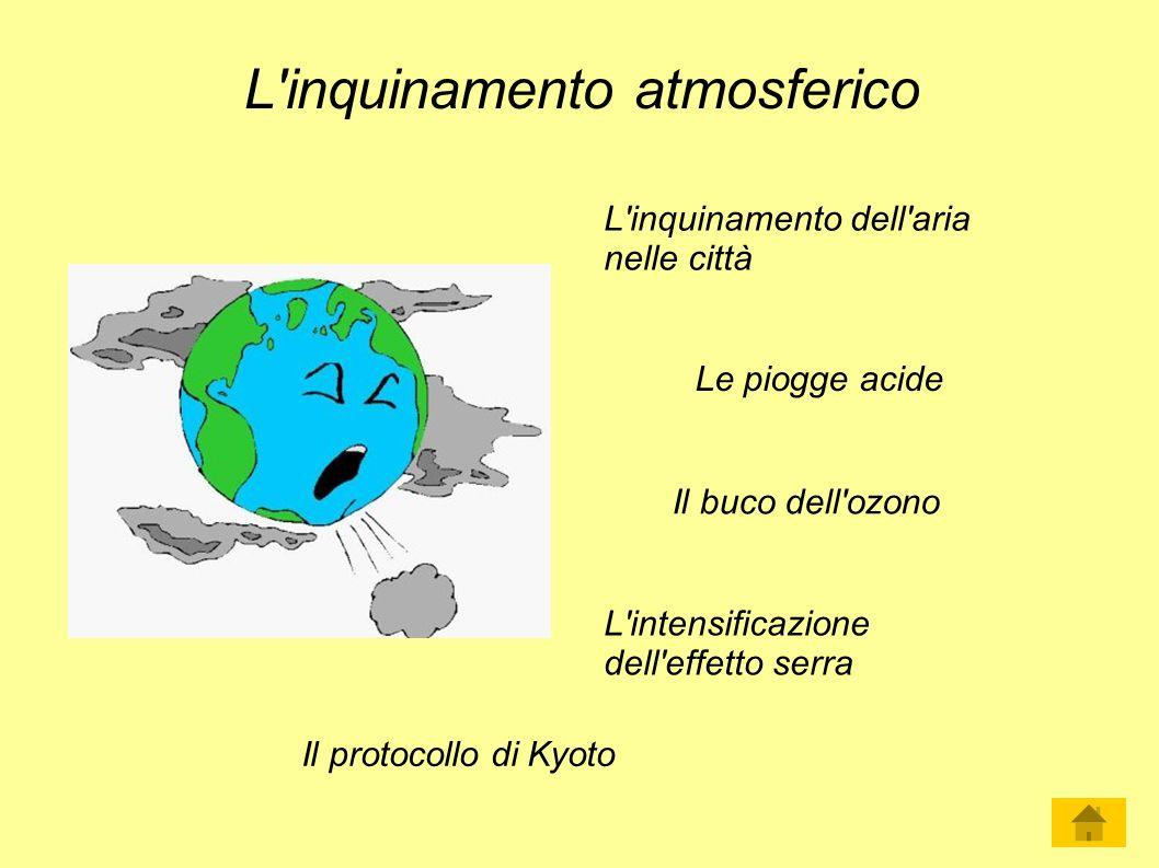 L'inquinamento atmosferico Le piogge acide Il buco dell'ozono L'inquinamento dell'aria nelle città L'intensificazione dell'effetto serra Il protocollo