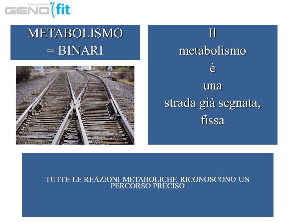 TUTTE LE REAZIONI METABOLICHE RICONOSCONO UN PERCORSO PRECISO METABOLISMO = BINARI Ilmetabolismoèuna strada già segnata, fissa