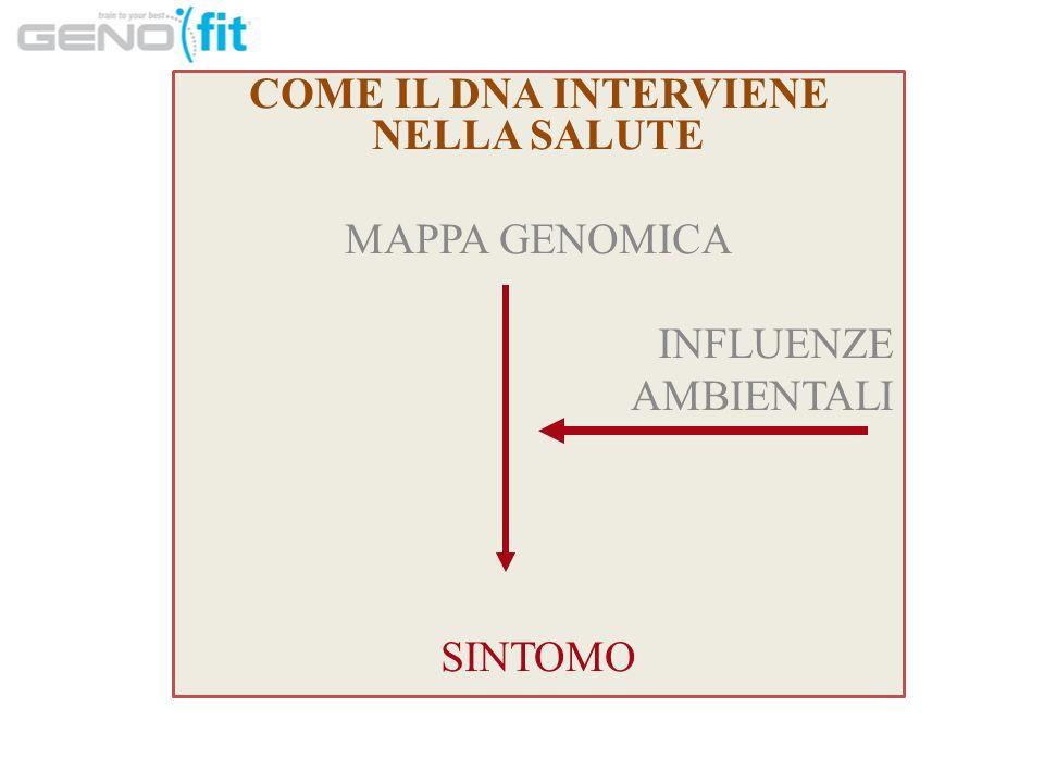 COME IL DNA INTERVIENE NELLA SALUTE MAPPA GENOMICA INFLUENZE AMBIENTALI SINTOMO